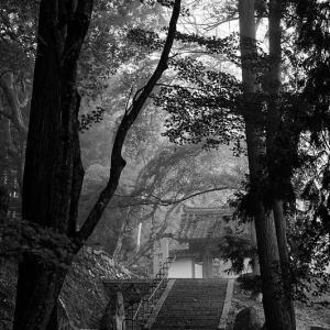 2019京都の紅葉・亀岡 積善寺