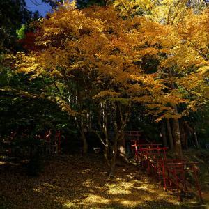 2019京都の紅葉・京丹波 導観稲荷神社