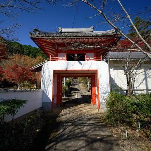 2019京都の紅葉・吉富 西光寺