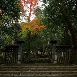 2019京都の紅葉・鹿ヶ谷 法然院