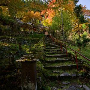2019京都の紅葉・内緒のお寺