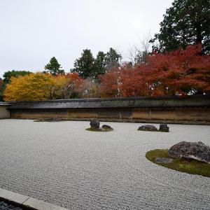 2019京都の紅葉・衣笠 竜安寺 其の二