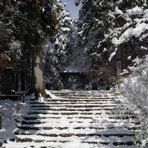 寒波到来!待望の雪景色@常照皇寺 其の二