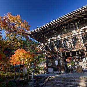 2018京都の紅葉・洛西 善峯寺