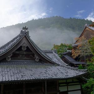 霧の善峯寺