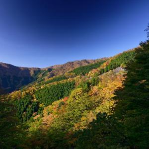奈良行者還林道の紅葉遠征・其の二