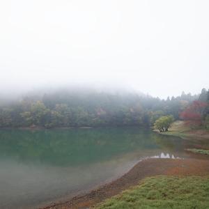 2020京都の紅葉・亀岡 神蔵寺