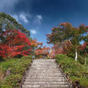 2020京都の紅葉・亀岡 千手寺