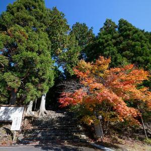 2020京都の紅葉・京北町 常照皇寺 其の一