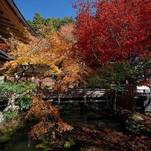 2020京都の紅葉・京北町 常照皇寺 其の二