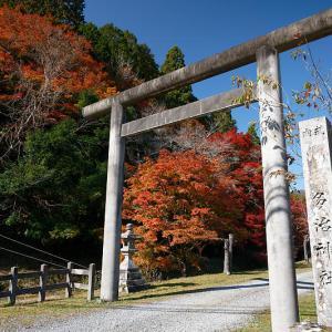2020京都の紅葉・日吉 多治神社