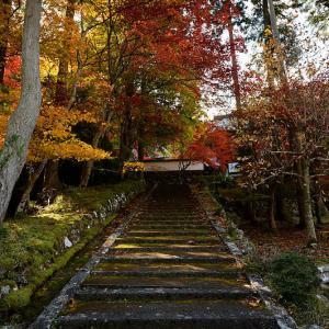 2020京都の紅葉・京丹波 玉雲寺