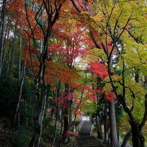 2020京都の紅葉・亀岡 積善寺