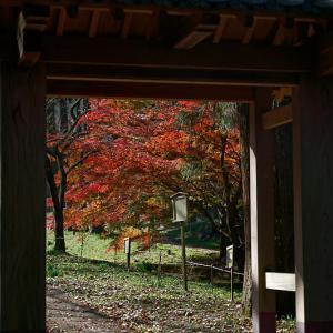 2020篠山の紅葉遠征・篠山 文保寺