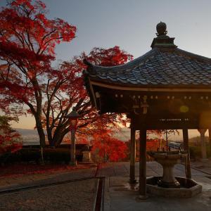 2020京都の紅葉・洛西 善峯寺 其の二