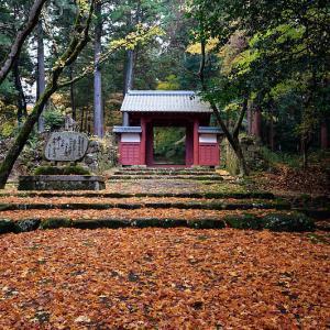 2020湖東の紅葉遠征・其の三(百済寺)
