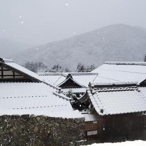 京の雪景色・大原 実光院