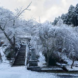 雪景色@福徳寺