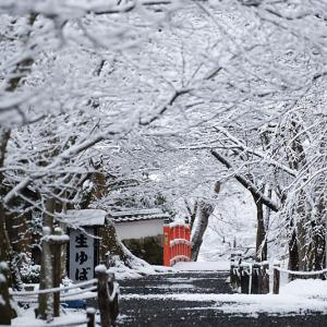 京の雪景色・大原 勝林院
