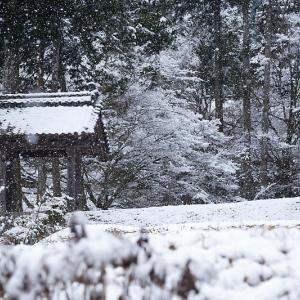 京の雪景色・龍穏寺