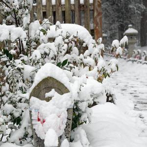 雪景色@滋賀県湖東 金剛輪寺・其の二