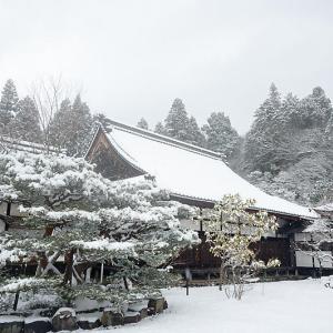 雪景色@滋賀県湖東 百済寺 其の一