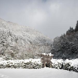 雪景色@滋賀県今津町 もみじ池