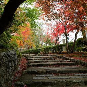 2018京都の紅葉・嵯峨野 化野念仏寺