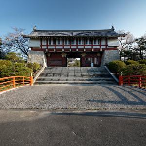 2021桜巡り 染井吉野@伏見桃山城