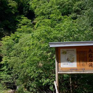 滝巡り@古屋地区 大岩の滝&槙の滝
