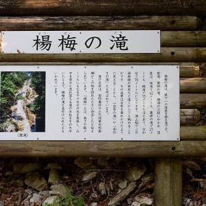 滝巡り@北小松 楊梅の滝・雌滝