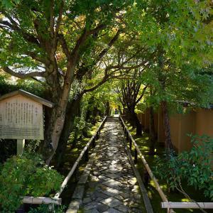 2018京都の紅葉・光悦寺 其の一