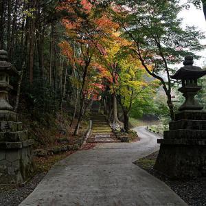 2018京都の紅葉・亀岡 積善寺