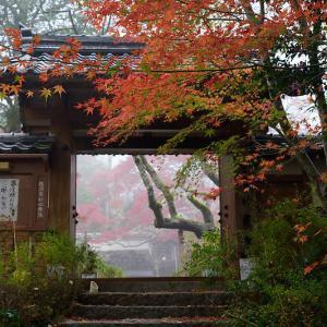 2018京都の紅葉・亀岡 神蔵寺