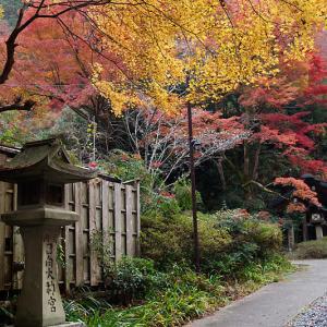 2018京都の紅葉・蹴上 日向大神宮