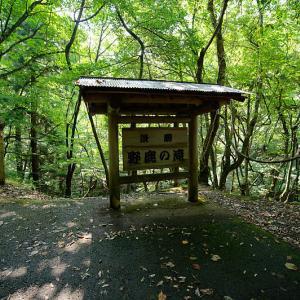 滝巡り@名田庄 野鹿の滝