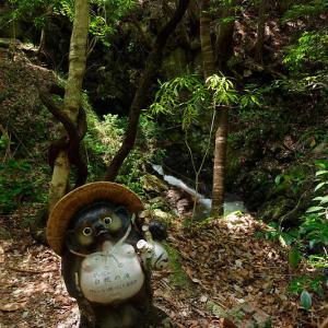 滝巡り@滋賀 鶏鳴の滝・其の二