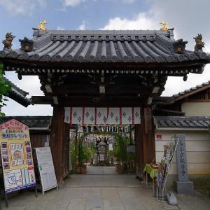 風鈴祭り@おふさ観音寺
