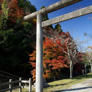 2018京都の紅葉・日吉 多冶神社