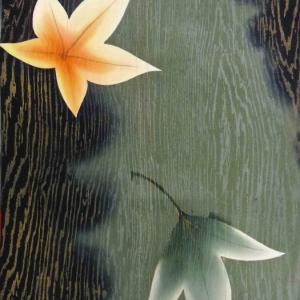 暈し地金通し菊の小紋と紅葉のモミジの長羽織