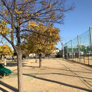 公園でピラティスの練習 ♪ 兵庫宝塚 ピラティス