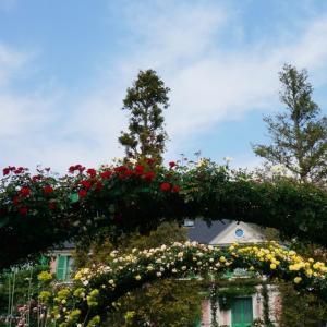 バラのアーチ 浜名湖ガーデンパーク