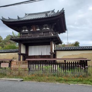 コスモス寺・般若寺周辺を散策・・(^_-)-☆