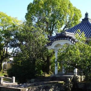【散歩日記】妙心寺を散歩。気持ちの良い秋晴れです