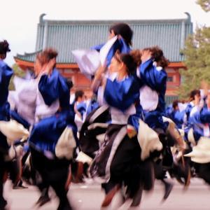 京炎 (京都大学祭典)