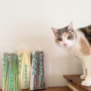 嬉し過ぎるアスパラと残念な猫写真