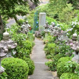 岡山のあじさい寺 大滝山西方院