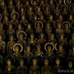 蓮城寺の千体薬師像