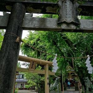 西浦荒神社-潜る