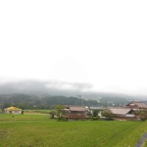 朝から曇り。郵便のお仕事。ピロピロキャッチ。